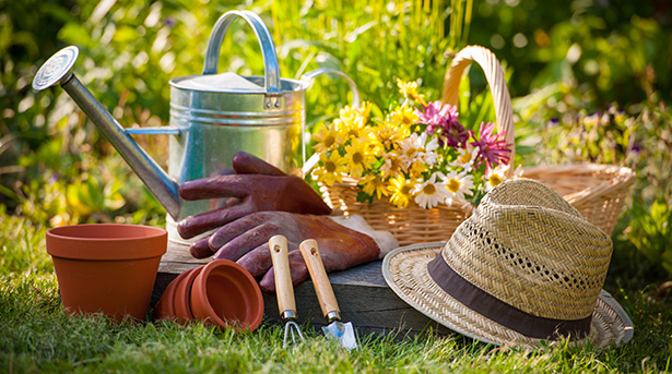 Shutterstock jardin naturel bio france jardinage 05